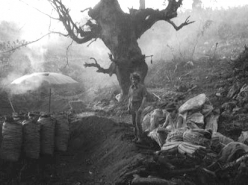 Charcoal-Makers (1990)