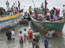 Fishers of Dar (2001)