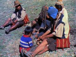 Potato Planters (1974)