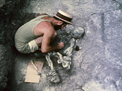 Tikal (1961)