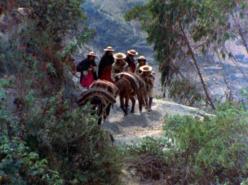 Viracocha (1974)