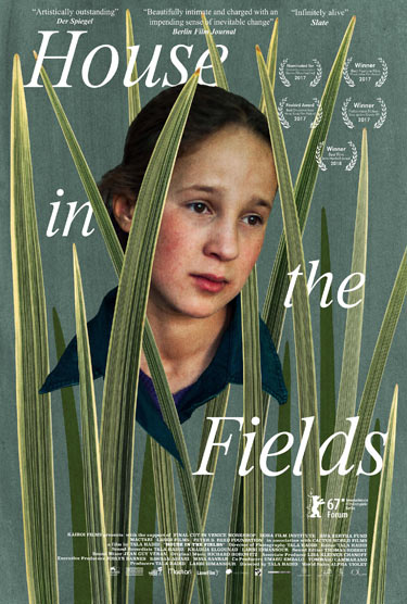 House in the Fields poster