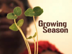 Growing Season - Jennifer Malin